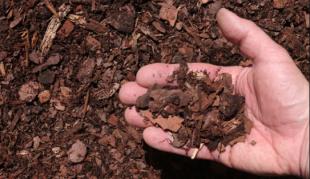 Humo por Hummus -Área de Agricultura Regenerativa
